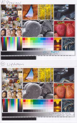 Scans of sample image printed via Preview and Lightroom.jpeg