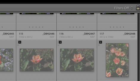 Screen Shot 2020-04-30 at 5.25.00 PM.png