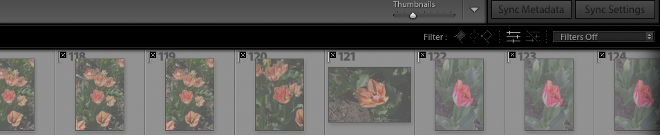 Screen Shot 2020-04-30 at 5.23.49 PM.png