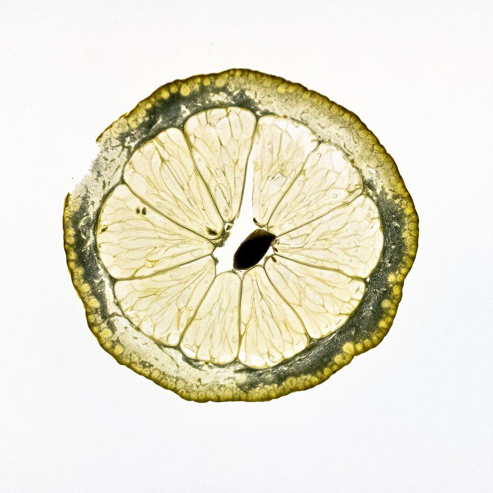Translucent Lemon