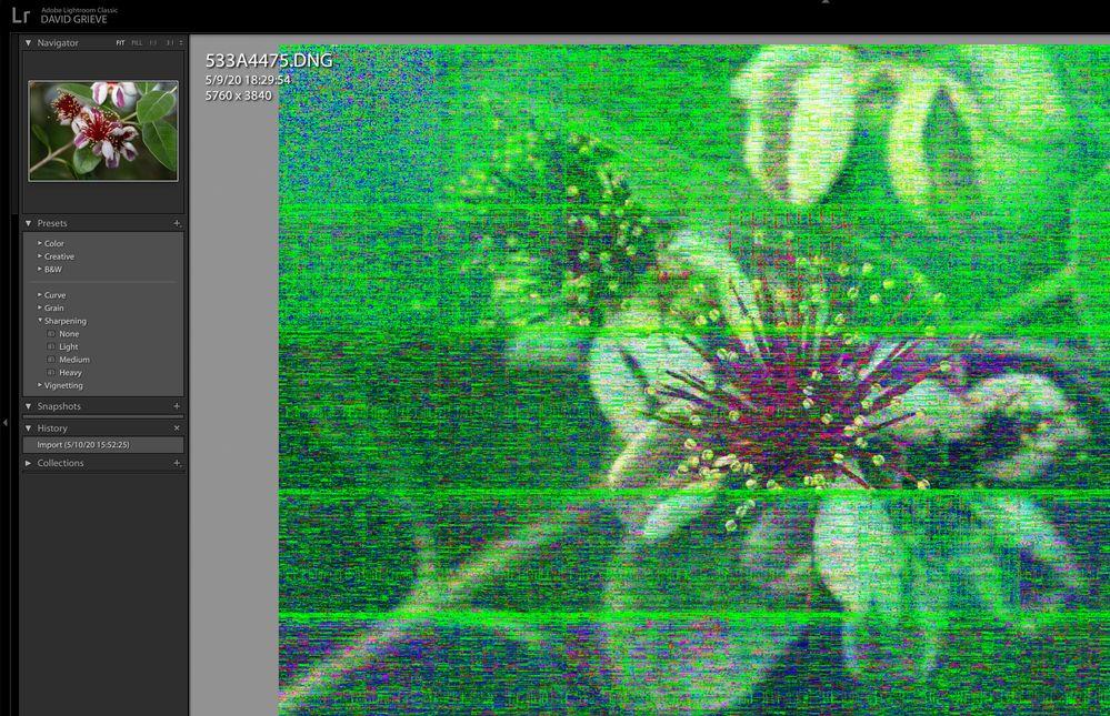 Screen Shot 2020-05-10 at 15.57.05.jpg