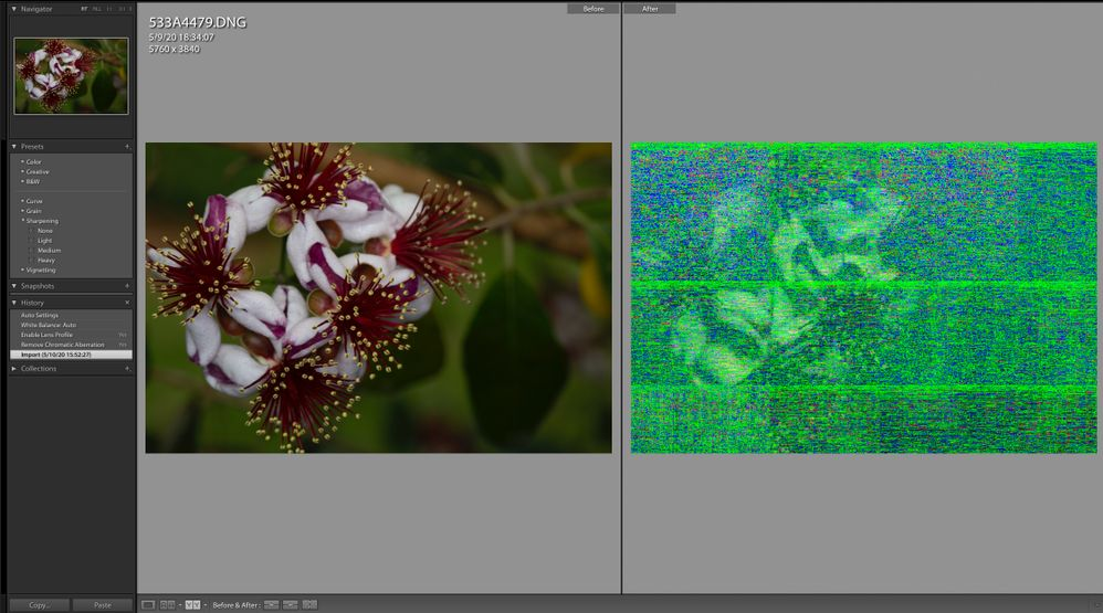 Screen Shot 2020-05-10 at 16.06.49.jpg