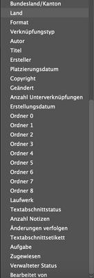 Indesign-Metadaten_optionen-2.png