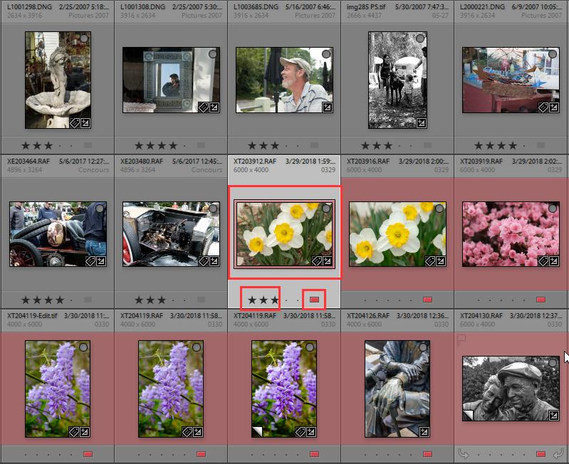 2020-05-23 15_55_37-LR Classic V9 Catalog - Adobe Photoshop Lightroom Classic - Library.png