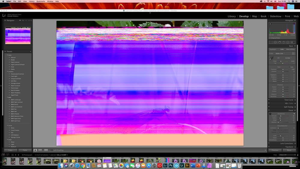 Screen Shot 2020-05-24 at 10.36.47.png