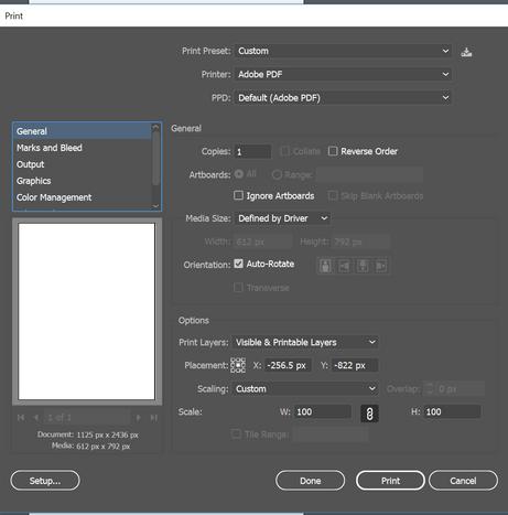 print settings Ai.png